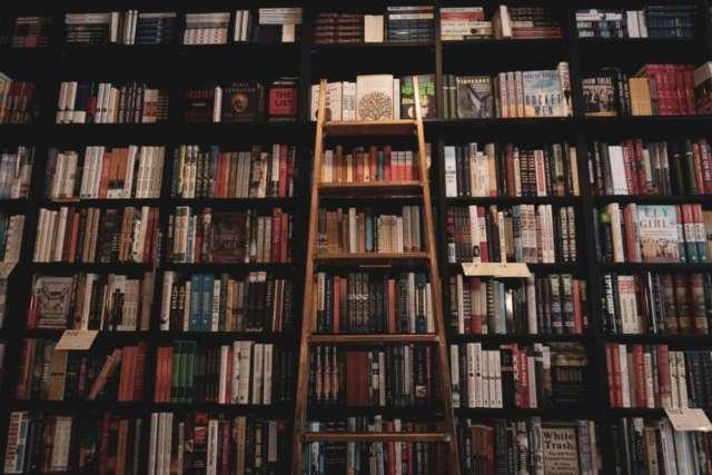 police s knjigama i ljestve