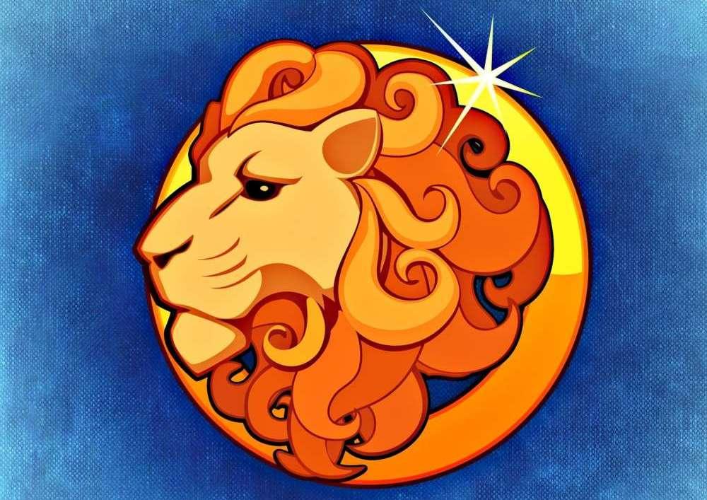lion-759374_1920