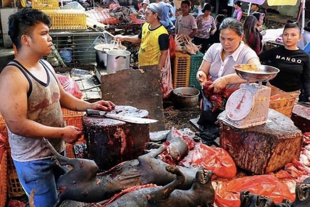 1_Images-from-Indonesia-markets
