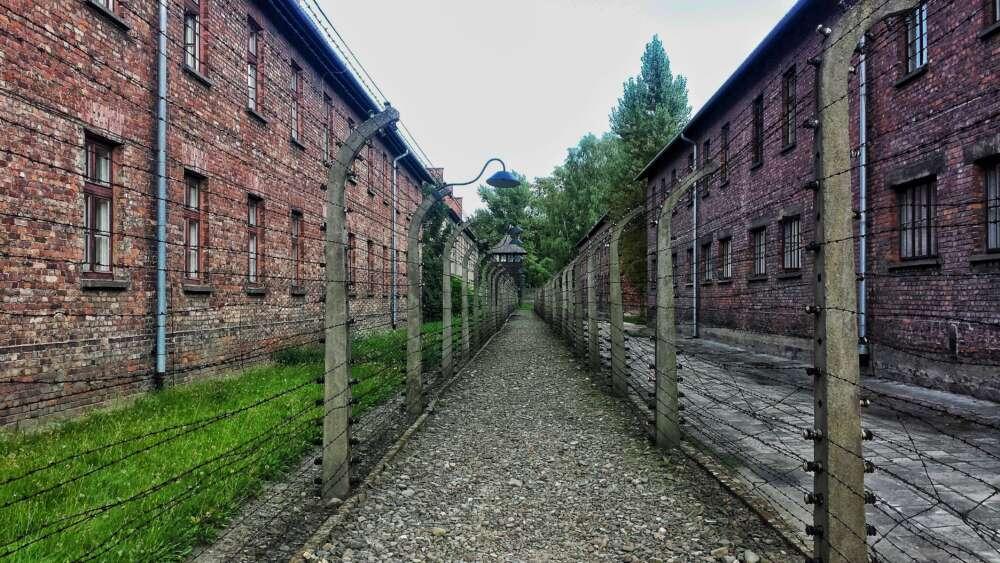 """Riječanke iz Auschwitza u knjizi progovorile o strahotama koje su prolazile: """"Dvadesetero nevine djece najprije su zarazili bacilima tuberkuloze…"""""""
