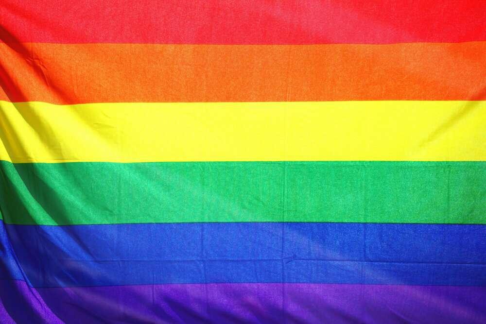Povijesni trenutak! Lezbijski i gej parovi u Hrvatskoj mogu pristupiti procjeni da postanu posvojitelji