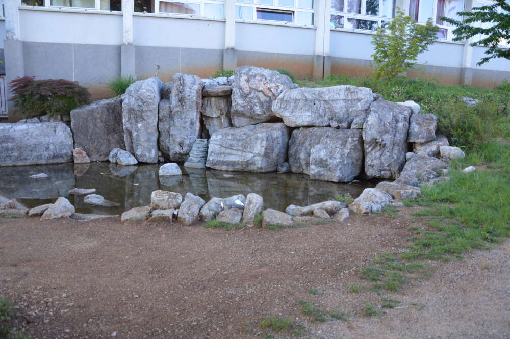 Japanski vrt danas