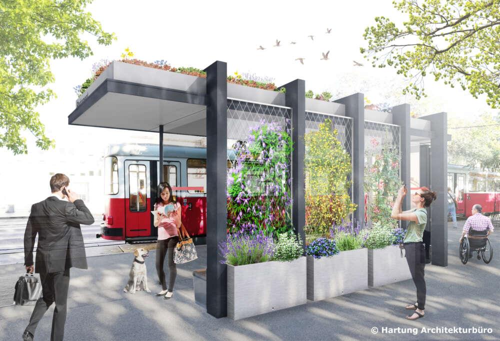 Ozelenjivanje tramvajskih stajališta © Hartung Architekturbuero