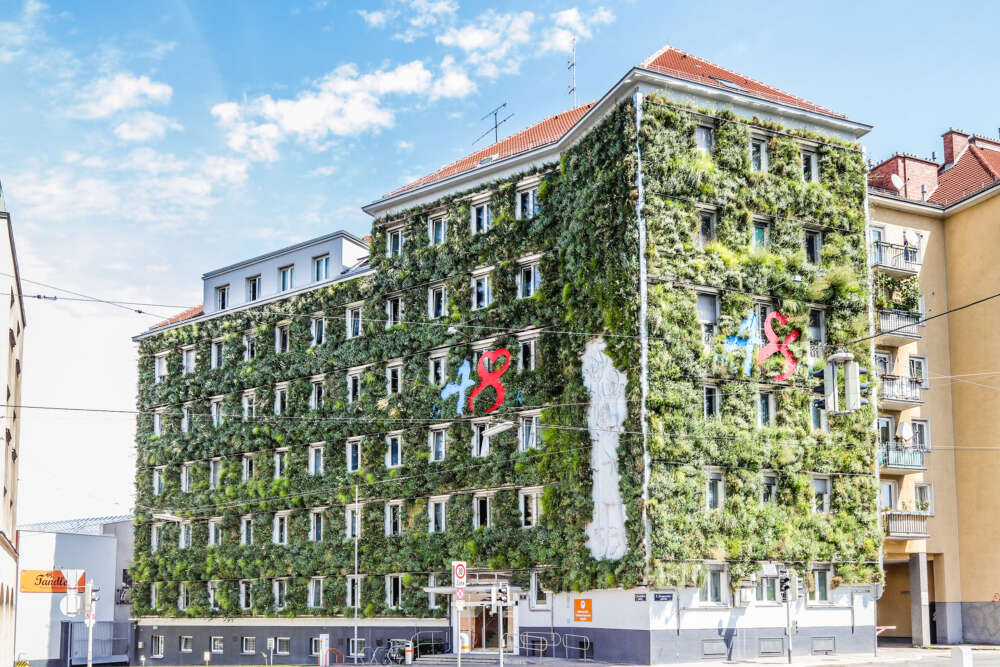 10 Jahre Grünfassade der MA 48 Zentrale